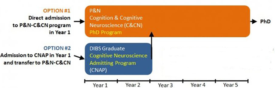 Cognition and Cognitive Neuroscience | Duke Psychology